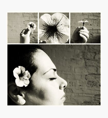 a flower. Photographic Print