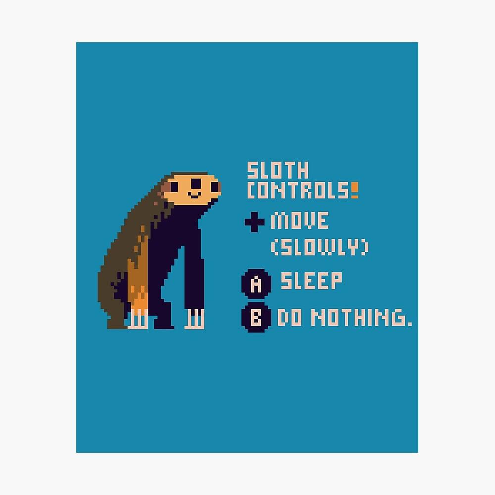 sloth controls! Photographic Print