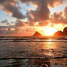 Oceanside Oregon Sonnenuntergang von Ran Richards