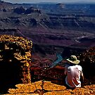 Taking In The View - Grand Canyon South Rim by dawiz1753