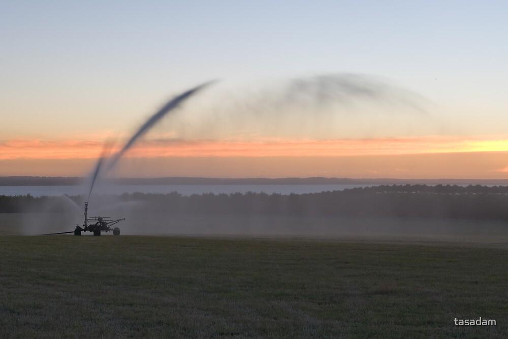 A farmers chore by tasadam