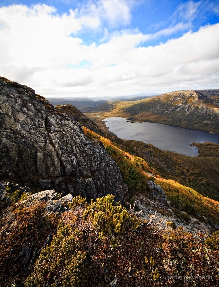 Up In The Altitudes_Cradle Mountain by Sharon Kavanagh