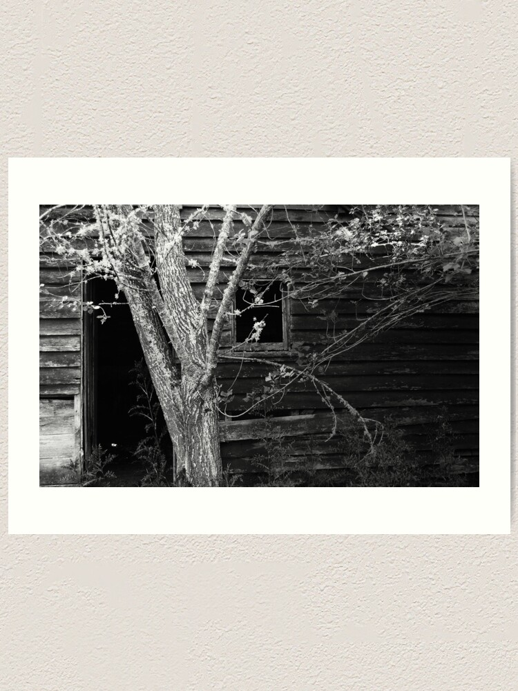 Alternate view of Fruit Picker's Hut at Neika Art Print