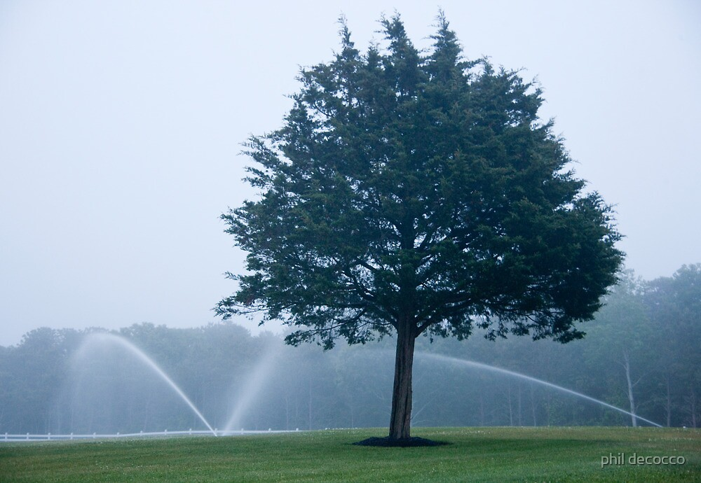 Hazy Day Sprinklers by phil decocco