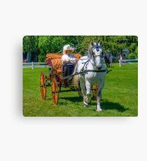 Carriage Classics Canvas Print