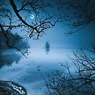 Moon Island Vol. 2 von happymelvins