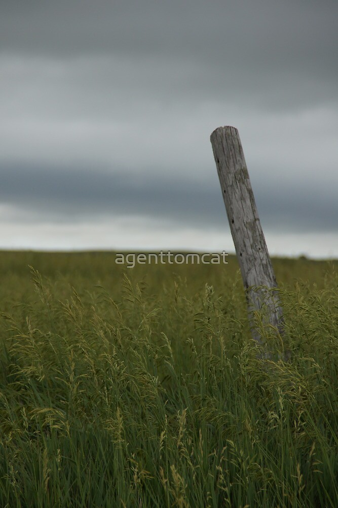 A lonely, dark post in Oz. by agenttomcat