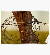 Barbed wire wrapped around a post Poster
