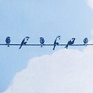 Sparrows in blue sky by ColorsHappiness