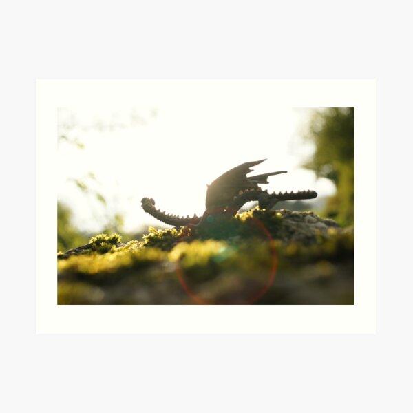 Dragonlet in sunbeam Art Print