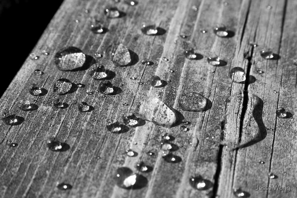 Dock Drops by Jesse Wong