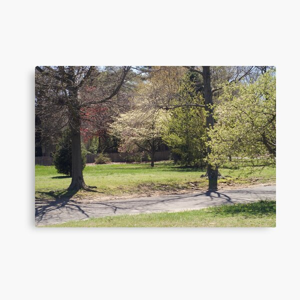 A walk through Knight Park, Collingswood NJ Canvas Print