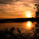 Follow The Sunset by Mike Topley