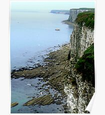 Bempton Cliffs  -  East Yorkshire Poster