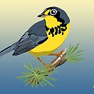 Canada Warbler by BennuBirdy