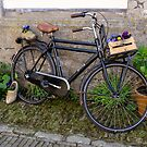 Bicycle, Wooden Shoes, and Flowers in Zeeland, Netherlands by Robert Kelch, M.D.