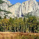 """""""Upper Yosemite Falls"""" by Lynn Bawden"""