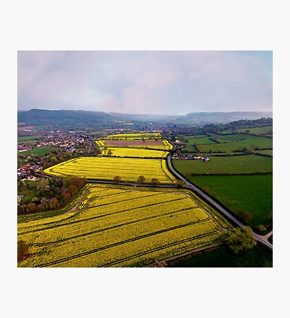 Rapeseed landscape Photographic Print