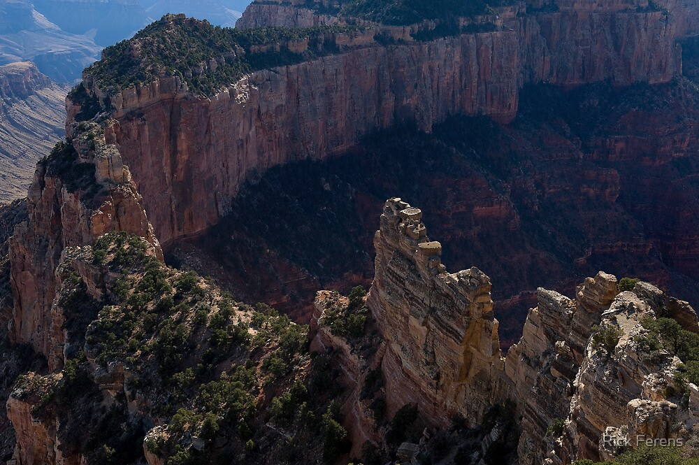 Cape Royal Viewpoint, Grand Canyon by Rick Ferens
