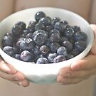 Bowl of Blueberries by Jaime de la Cruz