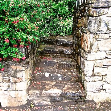Old Steps leading to a rundown and abandoned cottage in Donegal, Ireland by Shulie1