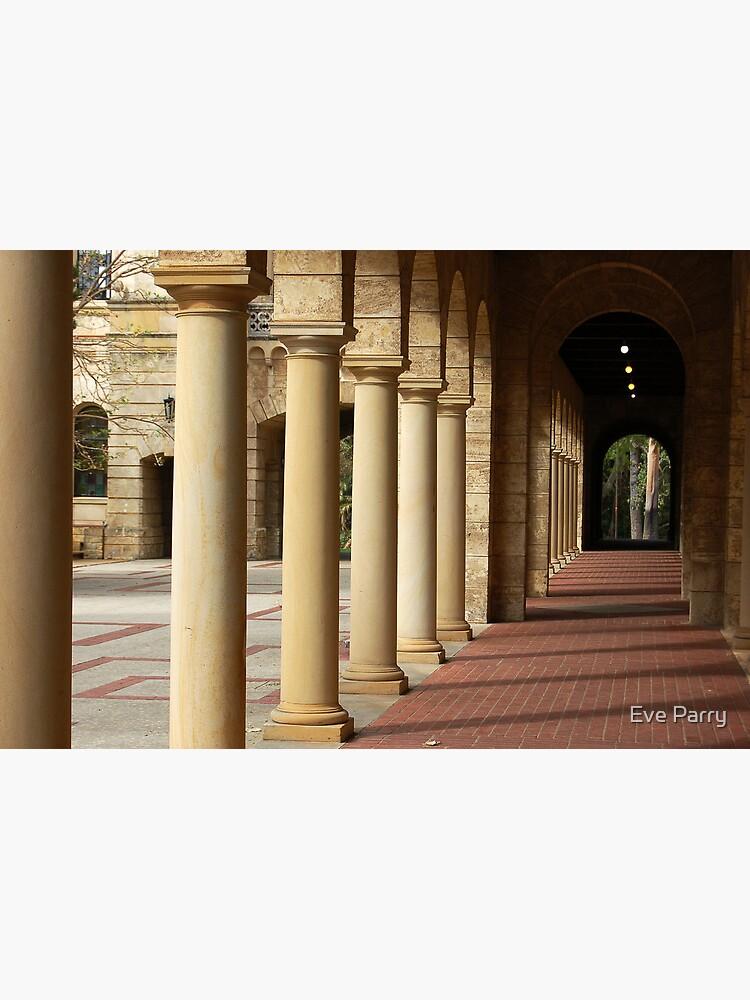 University of Western Australis -  Colonnade by AdamsWife