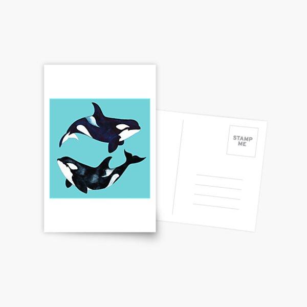 Orca Twins Postcard