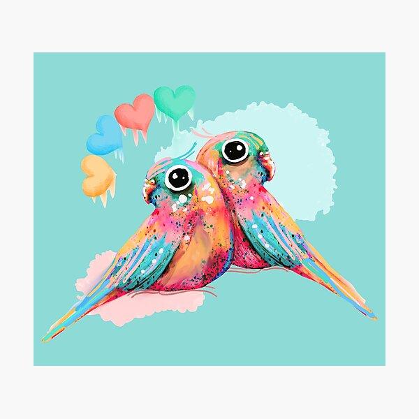 Rainbow Love Birds Photographic Print