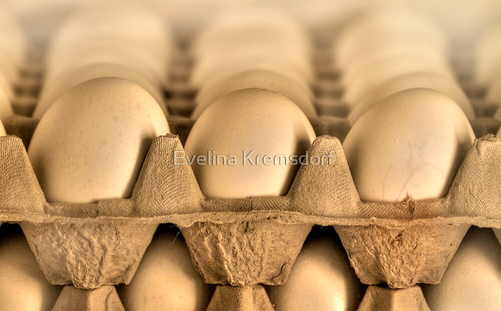 Eggs by Evelina Kremsdorf