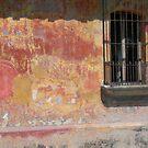 Distressed Wall by Lyn Fabian