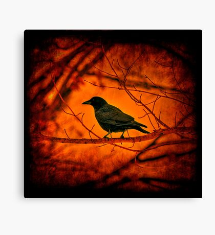 The Night Guard Canvas Print