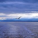 Leaving St Simeon Quebec by Bevellee