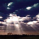 Blue Sky Burst by AARose