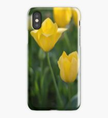 Yellow Crown Tulips iPhone Case