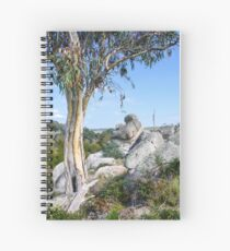 Wollondilly River Spiral Notebook