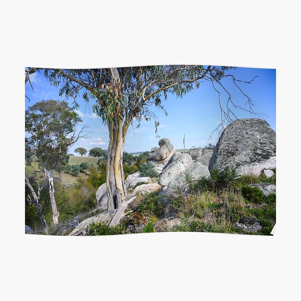 Wollondilly River Poster