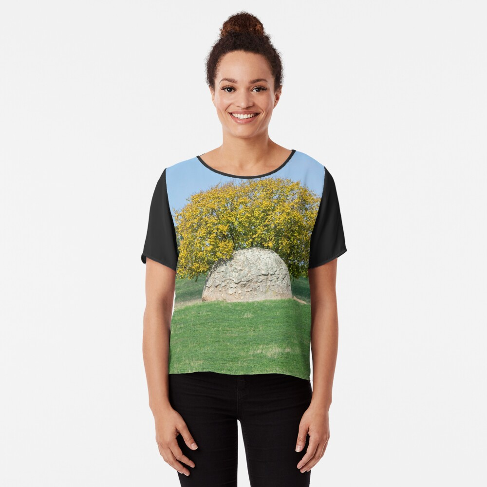 Rock and Tree in Meadow Chiffon Top