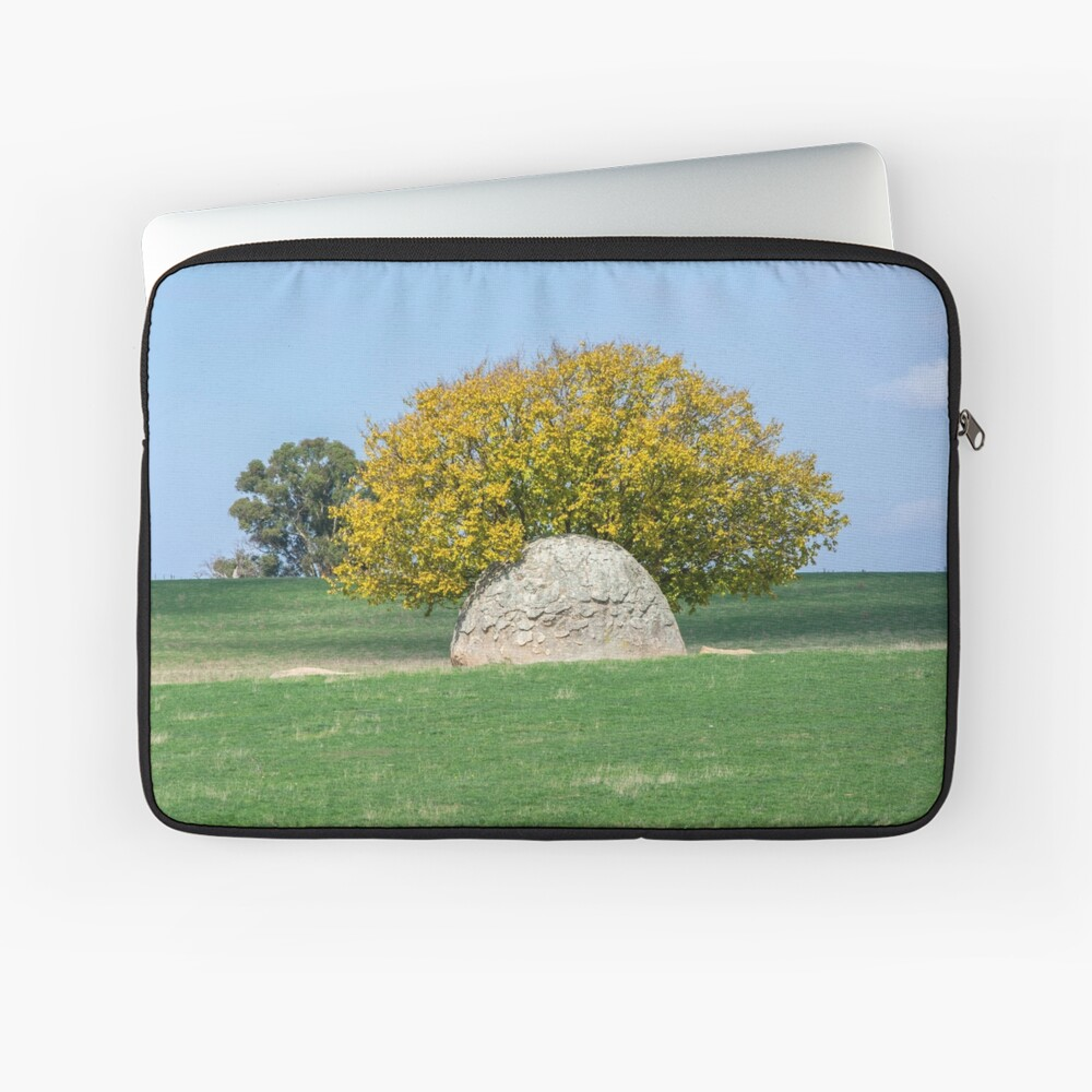 Rock and Tree in Meadow Laptop Sleeve