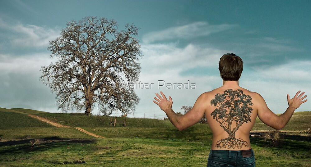 Oak Tree by Walter Parada
