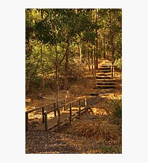 River Trail, Bridgetown, Western Australia Photographic Print