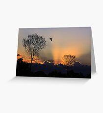 Lights and shadow Greeting Card