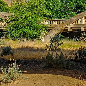 Indian Timothy Memorial Bridge by mtbearded1