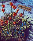 Oliver's Garden by Michael Beckett