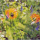 [ magical garden ] by MelAncholyPhoto
