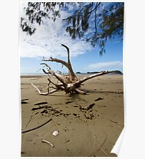 """""""Tree Wrecked"""" after Cyclone Ului Poster"""