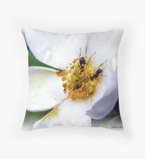 Nectar Seekers Throw Pillow