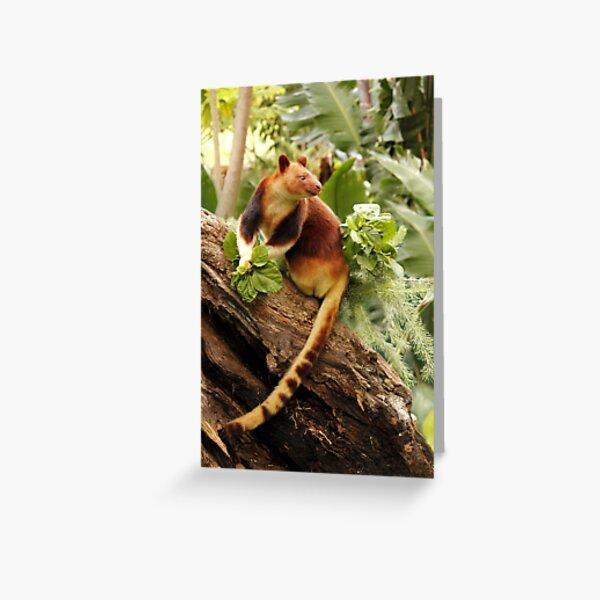 Goodfellows' Tree Kangaroo Greeting Card