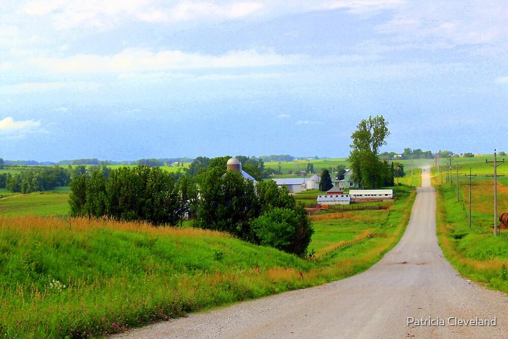 Midwestern Farm in Iowa True Americana by Patricia Cleveland