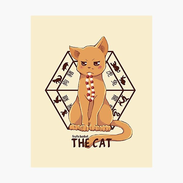 Kyo the cat Photographic Print