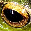 golden eye by john  Lenagan